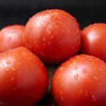 日高村 シュガートマト