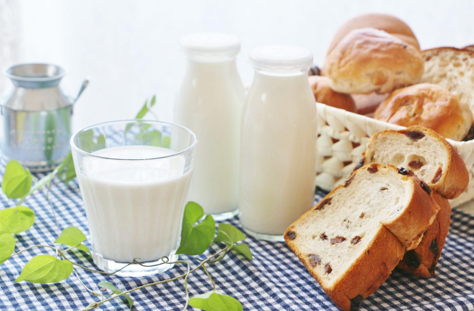 パン好きの牛乳 売ってる場所